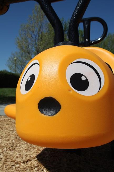 Sping Rider Bug Eyes, Close Up Detail